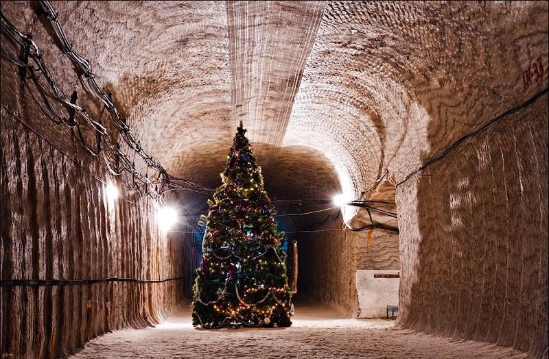 Cây thông Noel lung linh dưới ánh đèn.