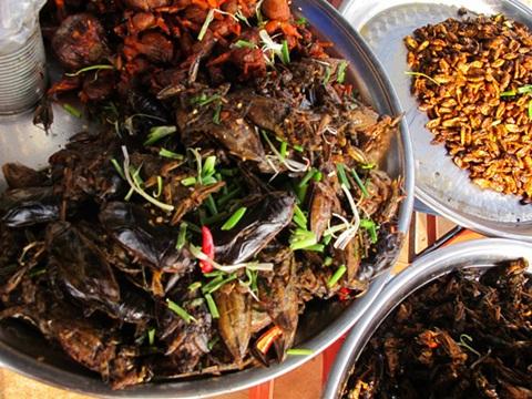 Tại Campuchia gián cũng trở thành thực phẩm ăn được