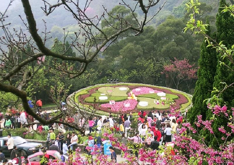 Mùa hoa nở tại công viên quốc gia Yangmingshan