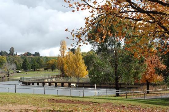 Mùa thu nước Úc6