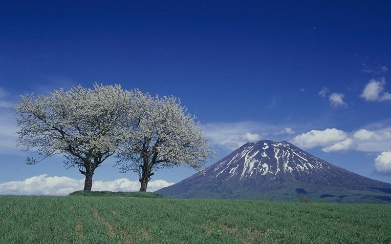 Yotei, đảo Hokkaido
