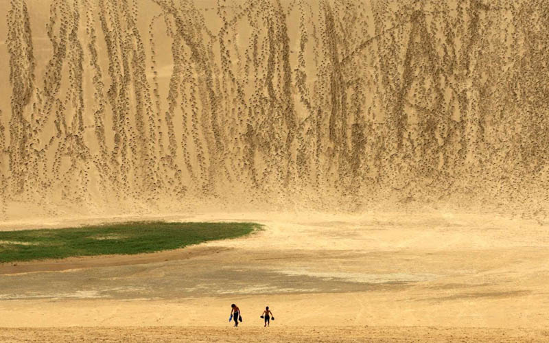 Nhật Bản cấm du khách vẽ bậy trên cồn cát Tottori