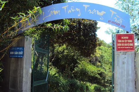 Nhất Lâm Thủy Trang Trà là khu tập trung bảo vệ rừng của Đà Nẵng