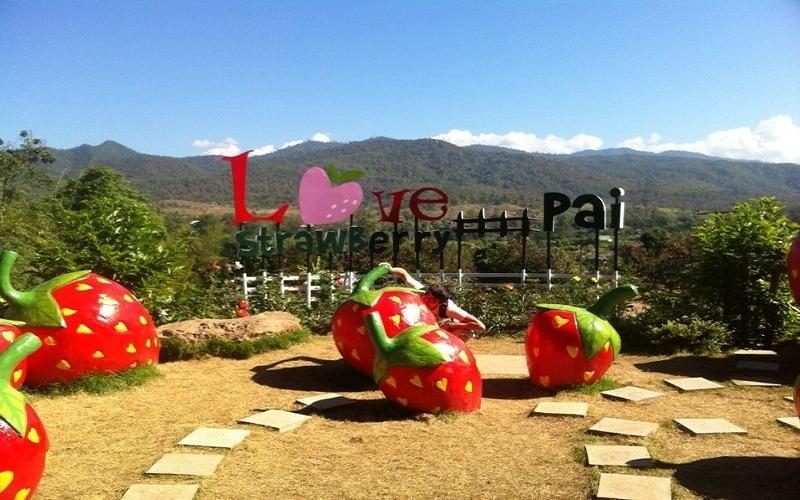"""Du lịch Pai có lẽ được nhắc tới nhiều hơn khi bộ phim tình cảm lãng mạn của Thái Lan mang tên """"Pai in Love"""