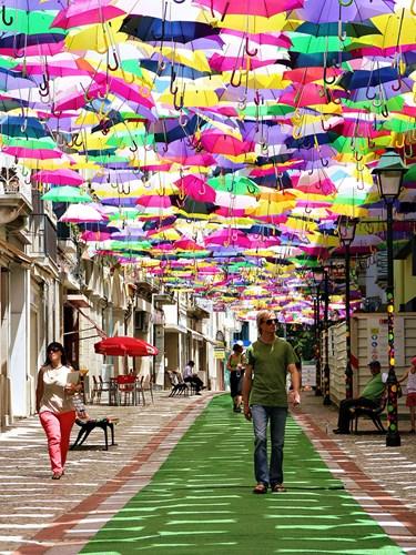 Phố ô bay rực rỡ ở Bồ Đào Nha