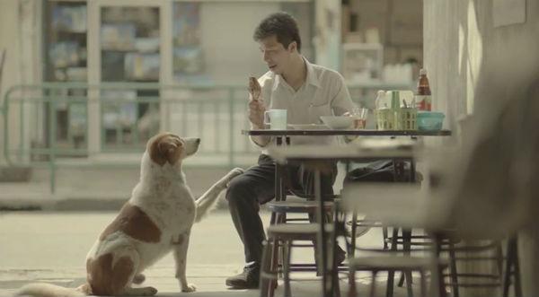 quảng cáo bảo hiểm Thái Lan
