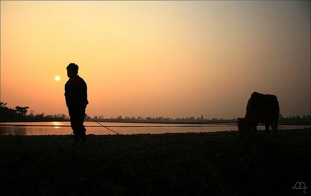 http://www.dulichvietnam.com.vn/data/quee.jpg