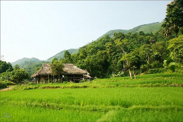 http://www.dulichvietnam.com.vn/data/quei.jpg