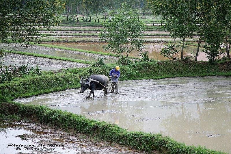 http://www.dulichvietnam.com.vn/data/quett.jpg