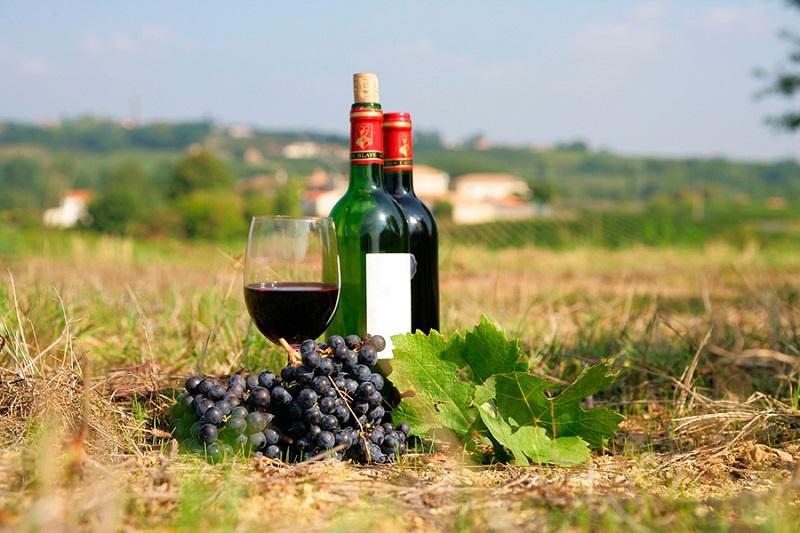 Rượu vang Pháp với hương vị cay nồng