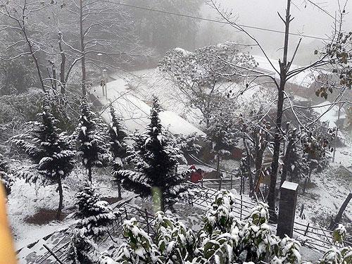Mưa tuyết lớn nhất từ trước đến nay tại Sapa