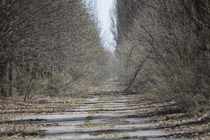 Thành phố Pripyat (Ukraine) đang trở thành điểm đến hấp dẫn với nhiều du khách