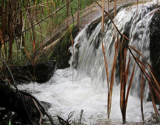 Thác Trâu Đá hoang sơ giữa núi rừng Đắk Lắk