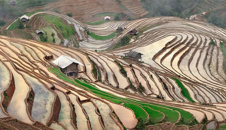 Ngỡ ngàng ruộng bậc thang Việt Nam qua ống kính phó nháy Nga