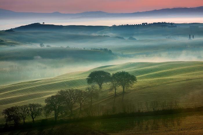 Buổi sáng trên những ngọn đồi xanh vùng tuscany Italy