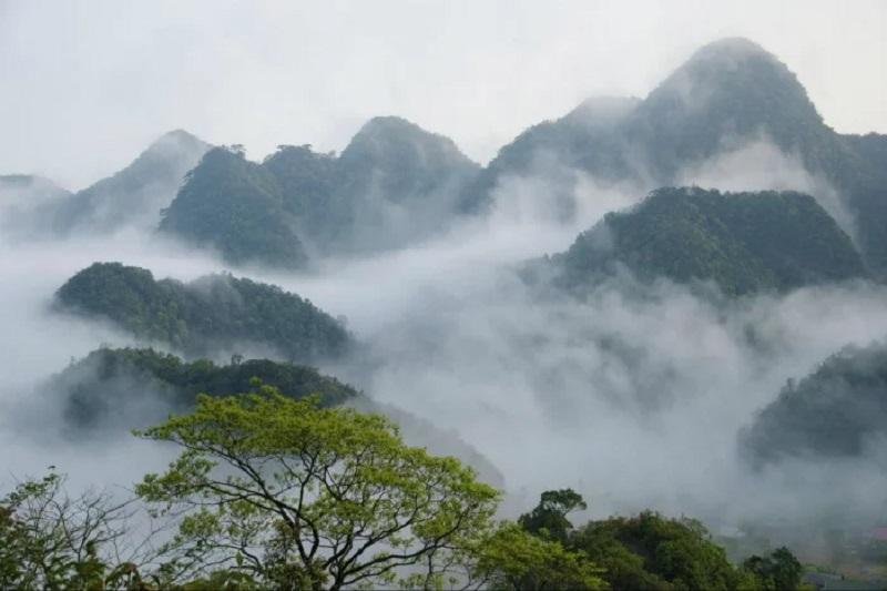 """Hóa """"Hàm Hương"""" ngay tại vườn quốc gia Cúc Phương"""