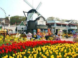 Kinh nghiệm đi Everland Hàn Quốc