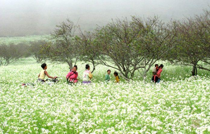 những địa điểm du lịch nổi tiếng tại Sơn La