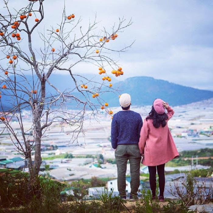 Đà Lạt - địa điểm du lịch mùa đông ở Việt Nam lý tưởng