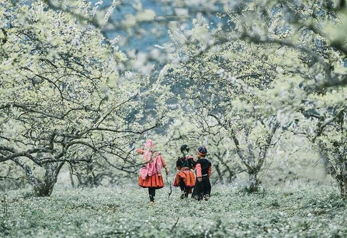 Mai Châu Hòa Bình - địa điểm du lịch mùa đông ở Việt Nam lý tưởng