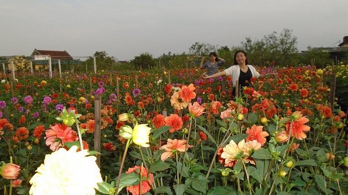 Làng vườn Bách Thuận - địa điểm du lịch nổi tiếng ở Thái Bình
