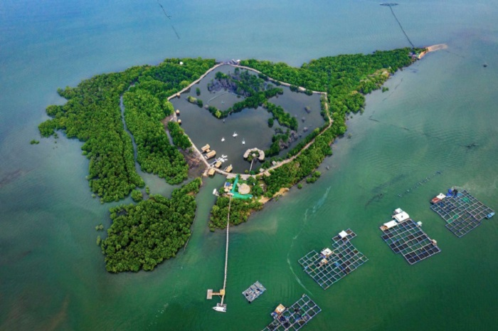 Go Gang Island Vung Tau