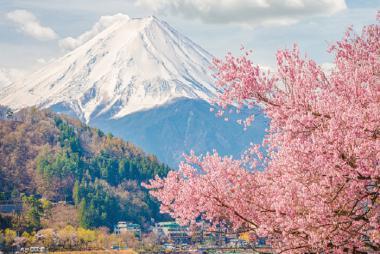 Cần Thơ - Tokyo - Fuji - Yamanashi 5N4Đ + Bay All Nippon Airways