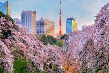 Cần Thơ - Kyoto - Osaka - Kobe 4N3Đ + Bay Vietnam Airlines