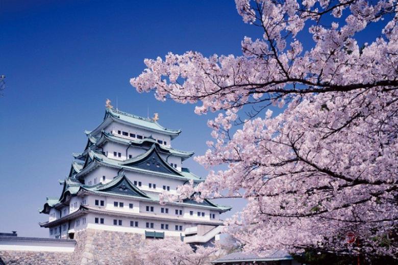 Đà Lạt - HCM - Kyoto - Osaka - Kobe 4 Ngày Bay VN