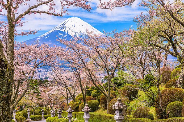 Hà Nội - Tokyo - Núi Phú Sĩ - Hakone - Kyoto - Osaka 6N Bay Vietnam Airlines