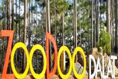 Tour Đà Lạt -Sở Thú ZooDoo-Vườn Bí Khổng Lồ-Cánh Đồng Hoa Cẩm Tú Cầu-1 Ngày