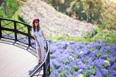 HCM - Đà Lạt - Hồ Vô Cực - Quê Garden - Vườn Hồng - Đà Lạt View 3N3Đ