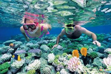 Land Tour Tại Phú Quốc 3N2Đ - Câu Cá Ngắm San Hô