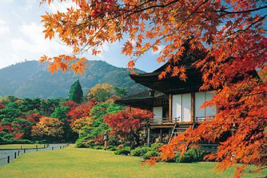 HCM - Tokyo - Yamanashi - Fuji 5N4Đ Bay All Nippon Airways