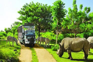 Combo Phú Quốc 3N2Đ - Vinoasis 5* + Vé Máy Bay + Vé Vui Chơi Vinpearl Land Và Safari