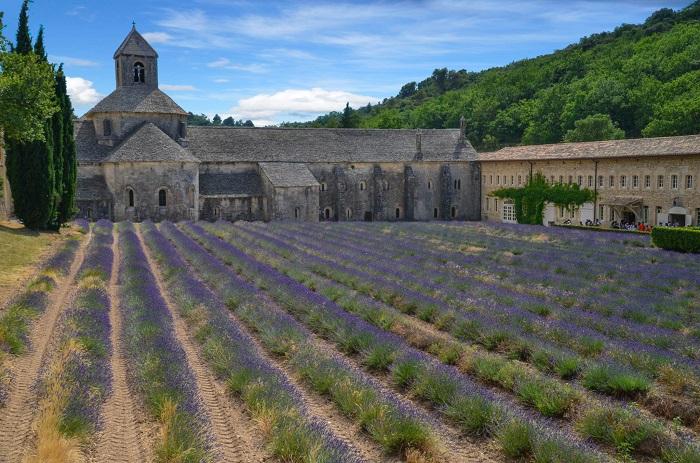 Abbaye_de_Senanque