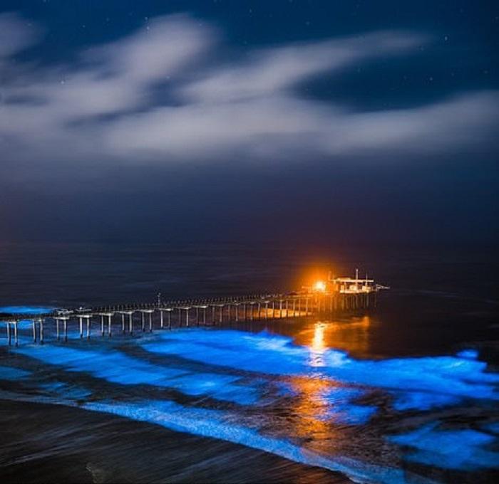 Nhiếp ảnh gia người Mỹ Stephen Bay gửi đến cuộc thi 2 tác phẩm ấn tượng. Nằm trong danh mục phong cảnh, một bức ảnh thu hút người nhìn bởi cảnh tượng phát quang sinh học của loài tảo biển trên bến Scripps ở La Jolla, California.