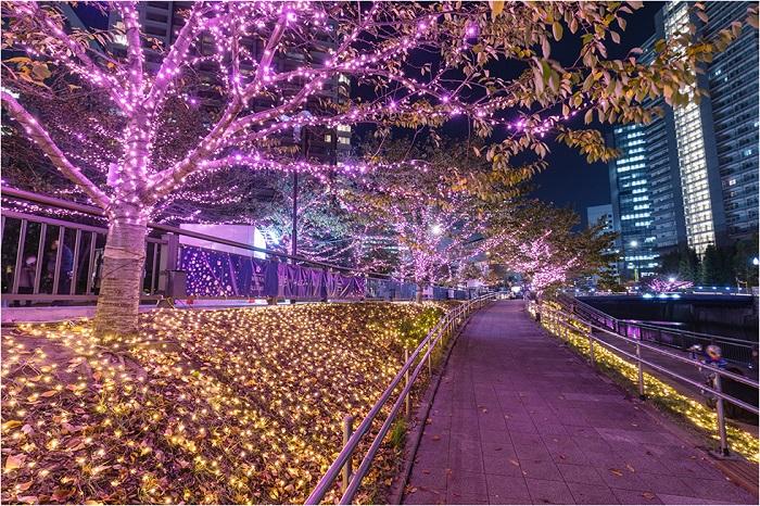 Giáng sinh ở Tokyo