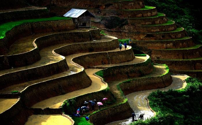 Bình yên ở Hoàng Su Phì mùa nước đổ khiến cho du khách cảm giác thư thái.