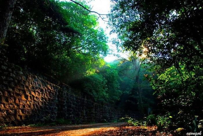 Thác Trĩ Sao là điểm dừng cuối của đường mòn Trĩ Sao trên núi Bạch Mã.