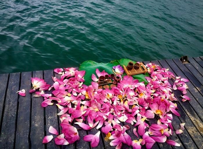 Thưởng trà sen bên hồ thật thanh tao và thơ mộng.