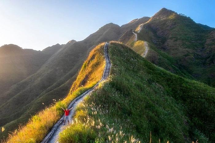 Mùa cỏ lau tại Bình Liêu là một trong những cảnh đẹp hấp dẫn du khách trải nghiệm