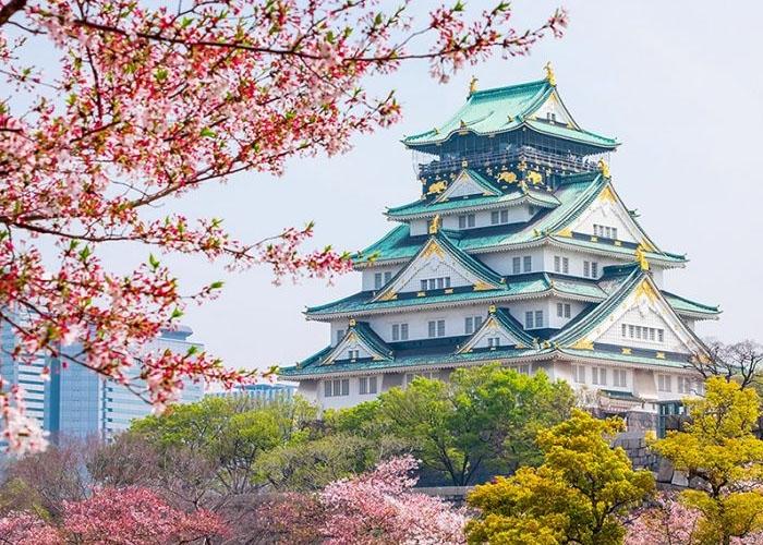 Lâu đài Osaka nguy nga giữa vườn hoa anh đào