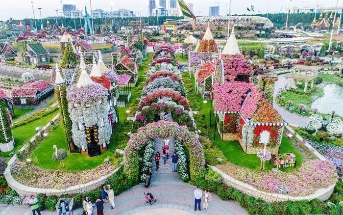 Vườn hoa tự nhiên Miracle Garden. Ảnh: khaleejtimes.com