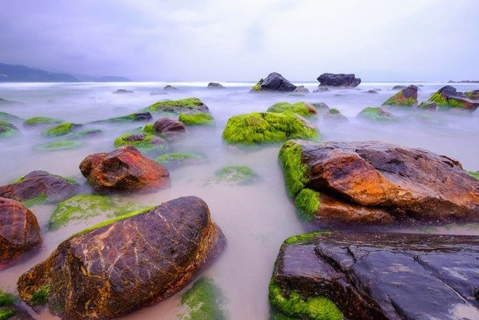 mùa rêu đá ở Nam Ô