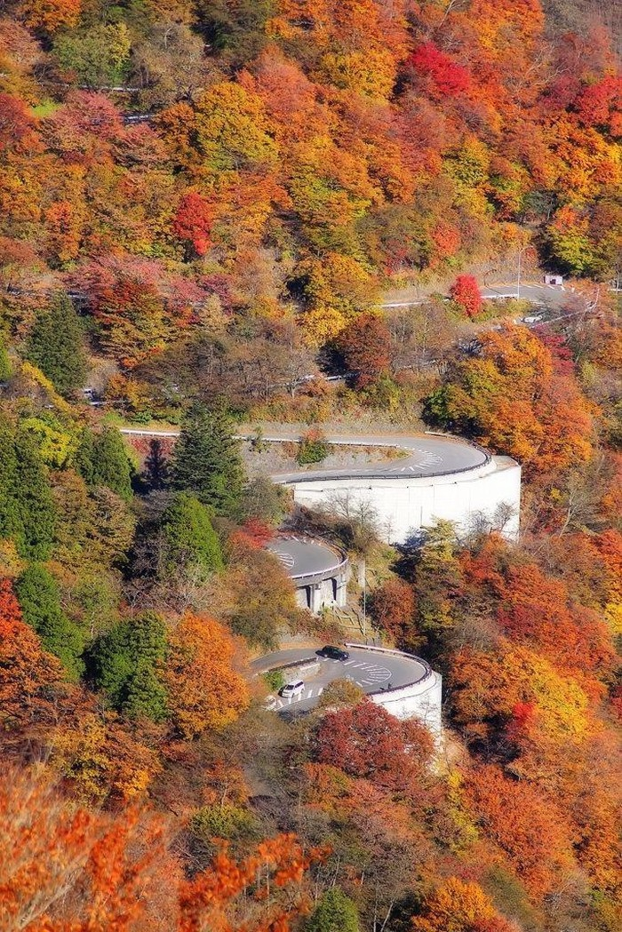 Thông thường, để lái xe qua một trong những con dốc, bạn sẽ mất khoảng 20-30 phút. Tuy nhiên, khi mùa thu tới, bạn có thể mất tới 3-4 giờ vào cuối tuần bởi lượng khách tới đây đông.