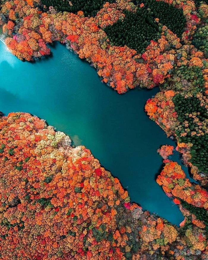 Đi cáp treo mất khoảng 3 phút và chi phí khoảng 6,7 USD, bạn có thể chiêm ngưỡng núi Nantai, hồ Chuzenji và thác Kegon. Đây cũng là nơi tuyệt nhất khiến du khách tận hưởng vẻ đẹp tráng lệ của thiên nhiên.