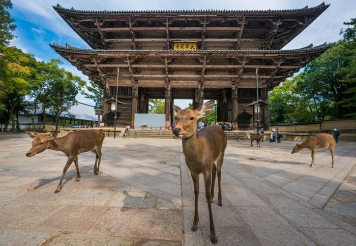 thị trấn cổ kính của Nhật Bản
