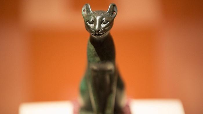 Người dân Ai Cập cổ đại coi mèo là loài vật thần bí, có khả năng đem lại may mắn.