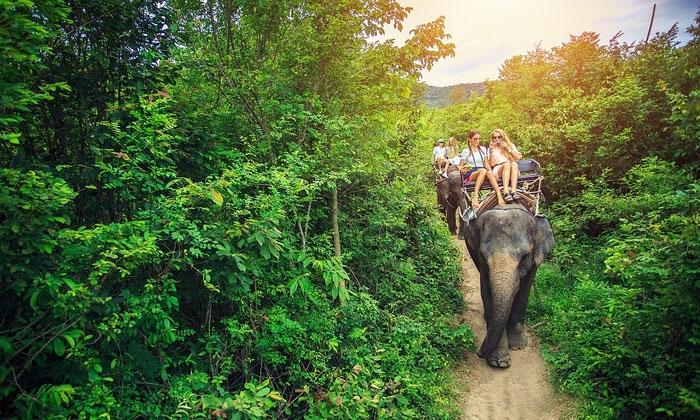 Cưỡi voi băng rừng ngắm cảnh đẹp. Ảnh: vacations.ctrip.com